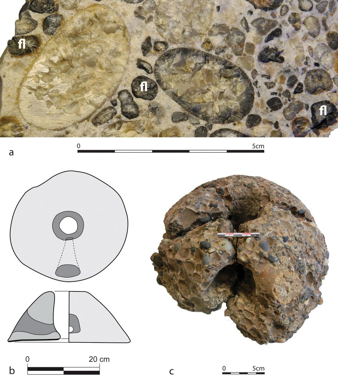 petit atlas des mineraux roches et fossiles 60 pierres du sol et de sous sol